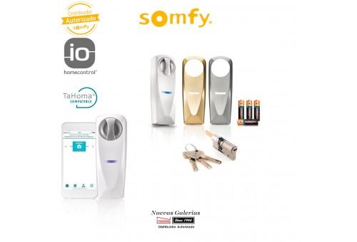 Standard cylinder connected lock - 2401398 | Somfy