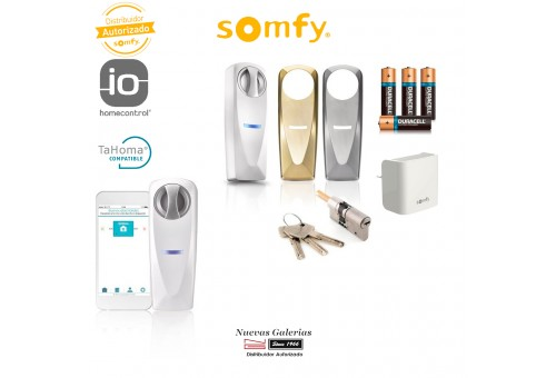 Pack Connected lock and gangway - 2401457 | Somfy