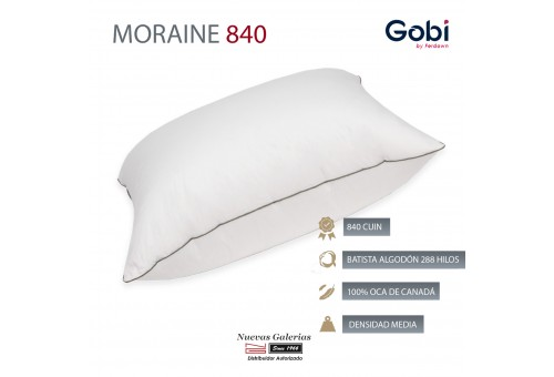 Moraine Euro Square Down Pillow 840 CUIN | Ferdown