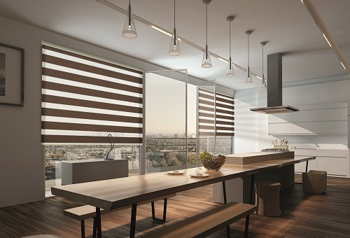 Roller Shades NEOLUX® Bandalux